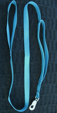 Dual Handle Leash_Large 1 inch Webbing
