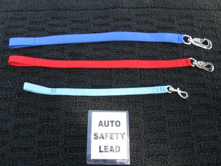 Auto Safety Leads
