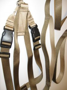 Titan Dog Harness Set -