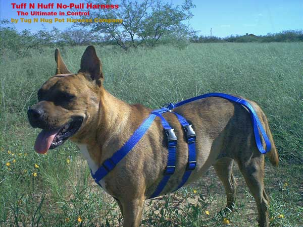 Tuff N Huff No Pull Dog Harness