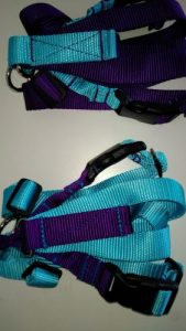 Titan_ Easy_On_Off_No_Pull_Harness_Color_Combinations