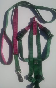 Titan Easy On/Off No Pull Dog Harness Set