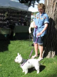 Purple EZ Harness with matching DH Leash