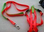 Titan Easy On/Off No Pull Dog Harness Set - Neon Orange - Neon Lime